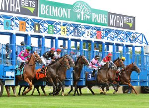 Belmont Park Racecourse