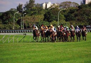 Clairwood Racecourse